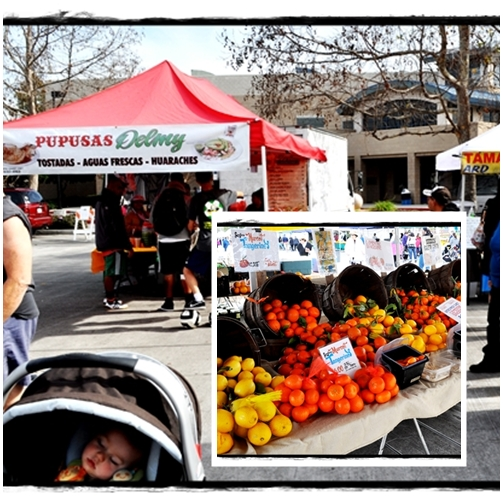 oranges and lemons and toddler sleeping at farmer's market