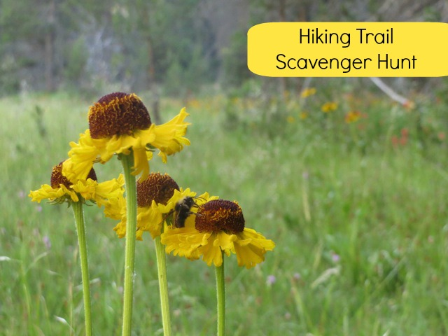 Kid's Hiking Scavenger Hunt
