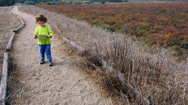 Family Volunteering at Ballona Wetlands