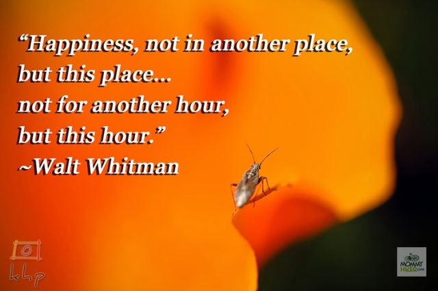 Inspirational Quote - Walt Whitman