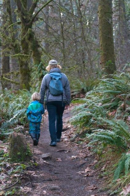 Toddler hiking