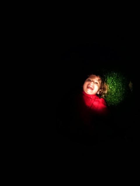 Star Gazing with Kids