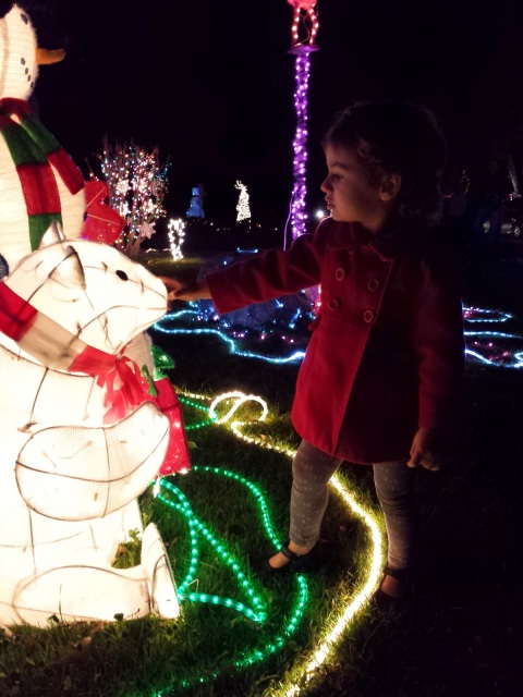 Nighttime Outdoor Christmas Lights with Kids