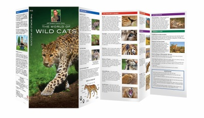 Jeff Corwin Connect Pocket Naturalist Guide by Waterford Press