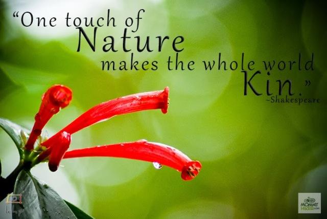 Inspirational Quote - William Shakespeare