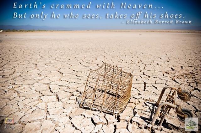Inspirational Nature Quote - Elizabeth Barrett Brown