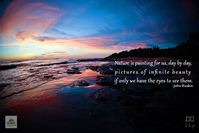 Inspirational Nature Quote