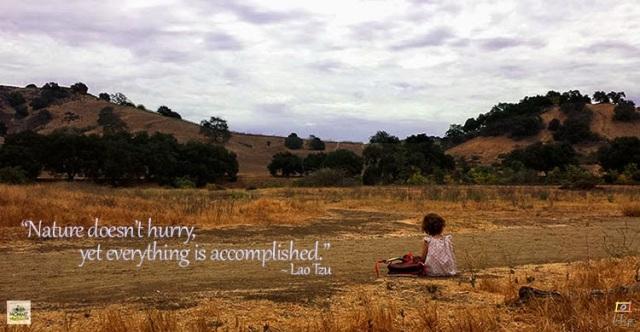 Inspirational Nature Quote - Lao Tzu