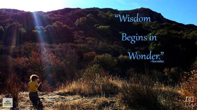 Inspirational Nature Quote - Socrates