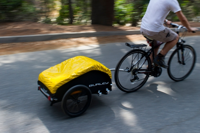 bike-picnic-burley